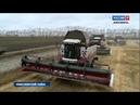 Вести узнали с каким результатом завершили уборочную аграрии в Ярково