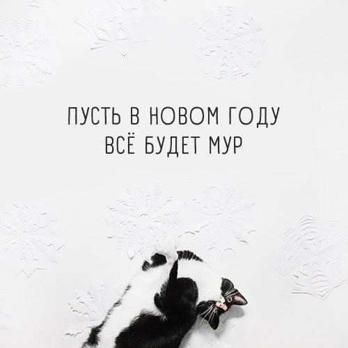 Фото №456241418 со страницы Yuri Dolotov