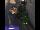 16.07.18 Продуктовые помойки Выборгского района