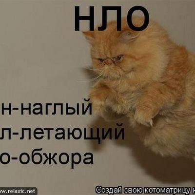 Рыжий Кот, 13 января , Кривой Рог, id180097734
