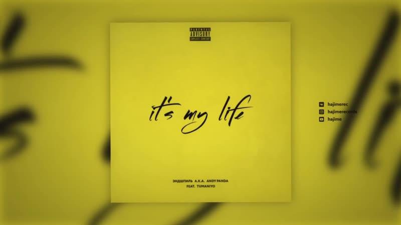 Эндшпиль feat. TumaniYO - Its My Life (Official Audio)
