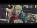 Harley Quinn | hi bich