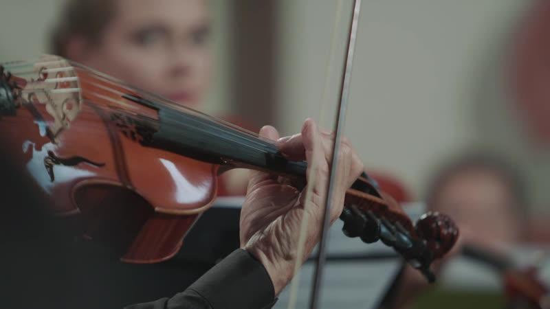 Christoph Graupner - Concerto for viola damore in D major, GWV 314 - Orchestra Ars Longa [Eugeniusz Dąbrowski]