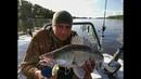 В поисках ТРОФЕЙНОГО судака и ловится ли судак на ПРЕЗИК! рыба в эхолоте Raymarine Dragonfly 4
