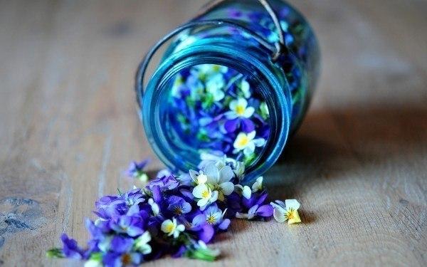 Как создать потрясающий цветочный запах в комнате? 1. В герметически закрывающуюся банку или бокал положите слой лепестков лилии, розы или других цветов и посыпьте мелкой солью. 2. Затем вновь положите слой лепестков, сверху посыпьте солью. 3. Заполнив, таким образом, банку или бокал налейте туда 3-4 ложечки спирта или водки. 4. Каждый раз, когда нужно, чтобы в комнате был приятный запах, откройте банку на несколько минут.