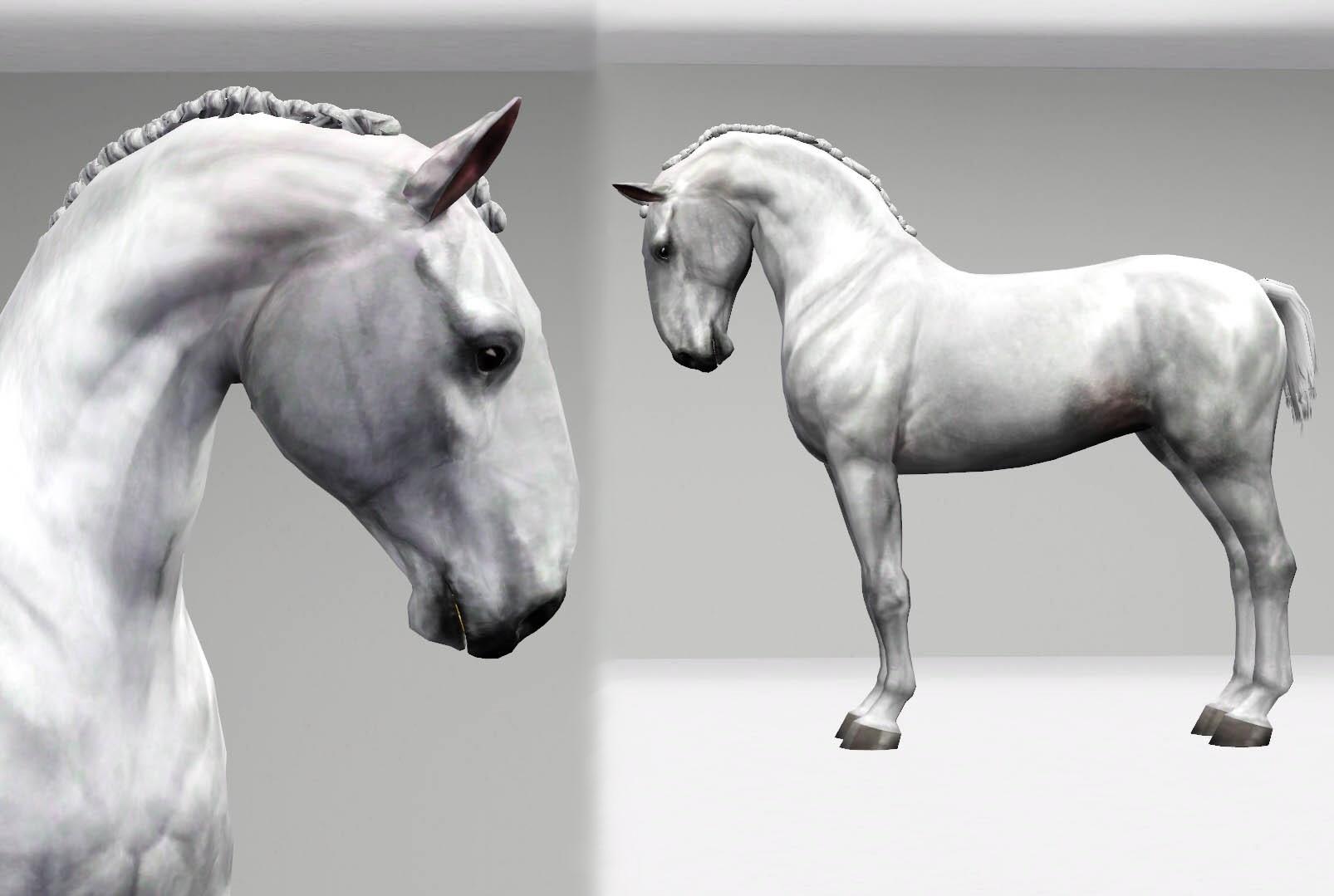 Регистрация лошадей в RHF 2 - Страница 8 QQ7-hp-ixXo
