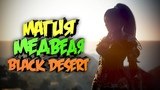 Black Desert Веселые моменты Отдельный выпуск про вайп (нет)