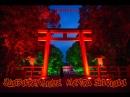 УДИВИТЕЛЬНЫЕ МЕСТА ЯПОНИИ