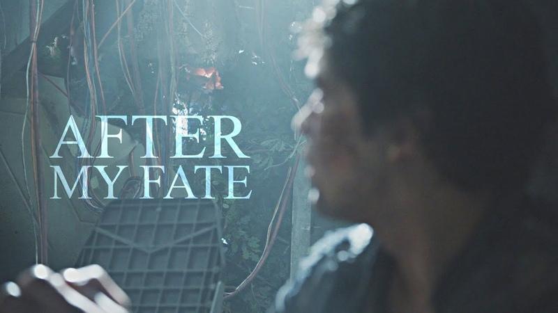 After My Fate | Bellamy Blake [HBD Nate]