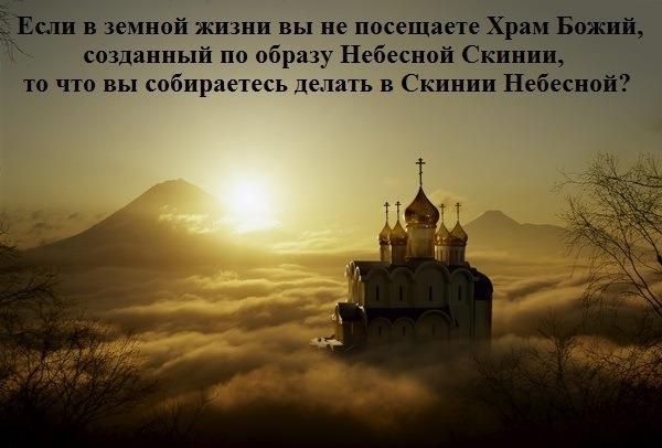 http://cs617524.vk.me/v617524587/1ee84/FC1K5YObAwg.jpg