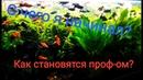 Как становятся профессионалами в аквариумистике? С чего я начинал?Первый зоомагазин СССР.