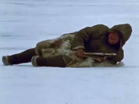 Stalking Seal On Spring Ice- Part 2