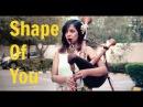 Ed Sheeran - Shape of you | Saathiya | Mashup Bagpipe Cover