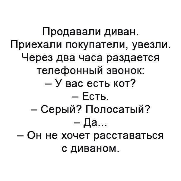 TqIBLj8sVKw.jpg