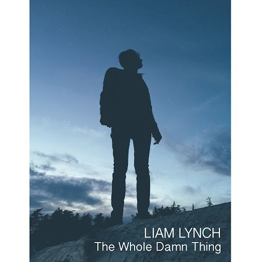 Liam Lynch альбом The Whole Damn Thing