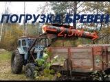 Трактор Т-40АМ Погрузка осины.