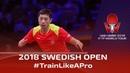 Xu Xin 🏓 Crazy Forehand Training 👌 2018 ITTF Swedish Open