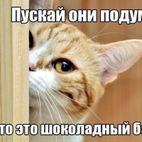 Григорий Сергеев, 12 августа 1986, Мурманск, id12364916