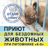 Приют для бездомных животных при питомнике К-9.