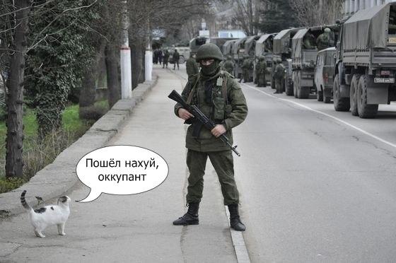 Путин не рассчитывал, что украинцы будут защищать свою страну с оружием в руках, - Die Welt - Цензор.НЕТ 3085