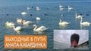 Дом в Анапе. Гостагаевская-Анапа-Новороссийск-Кабардинка. Корабль на мели.