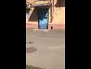 Джоник Македонский - Привезли общак