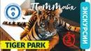 Экскурсии в Паттайе Тигриный парк лучший в Тайланде как добраться самостоятельно