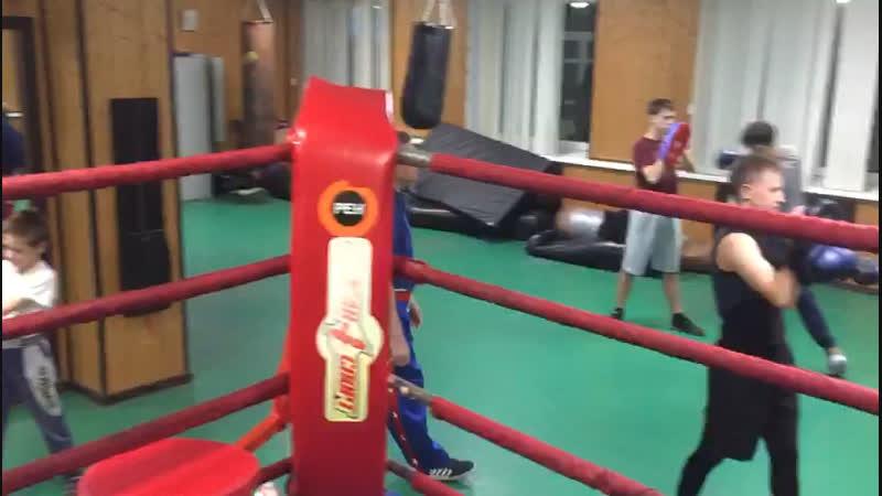 Небольшой отрезок тренировочного процесса младшей группы👍👍👍кикбоксингальметьевск