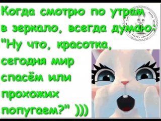doc9646441_471155168.mp4