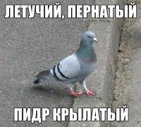 Алёна Яковенко, 18 января 1992, Новосибирск, id96699405