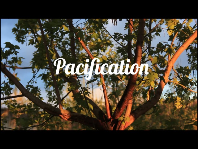 Pacification XR