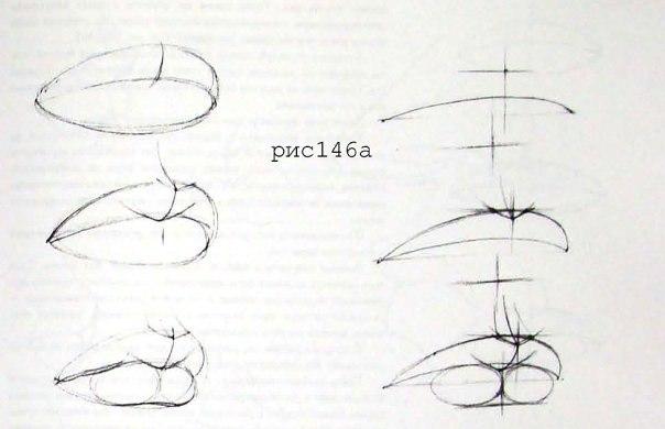 как правильно рисовать лицо карандашом: