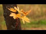 Александр Маршал_Любаша Осень