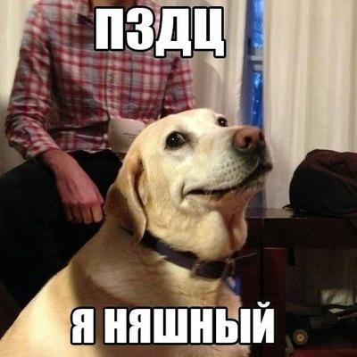 Макс Денисов, 8 февраля 1995, Мурманск, id199169848
