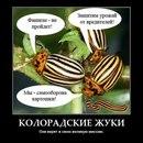 Василий Сидельников фото #26