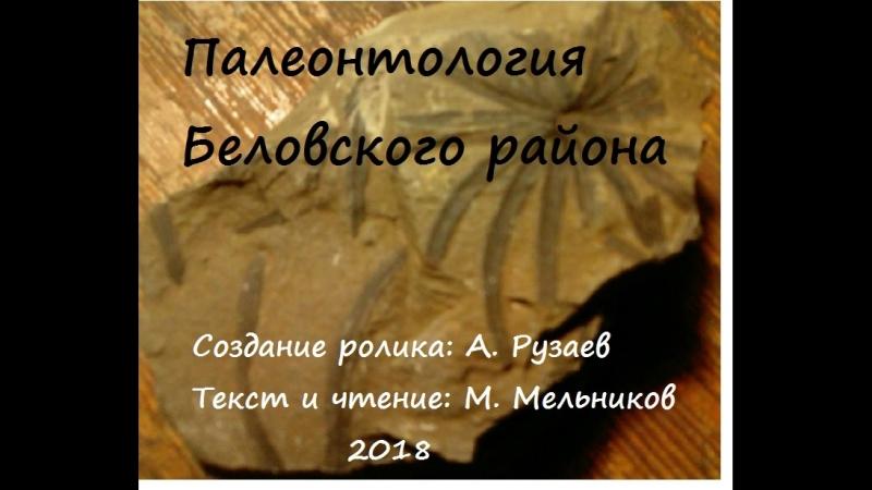 Палеонтология Беловского района ролик М Мельникова