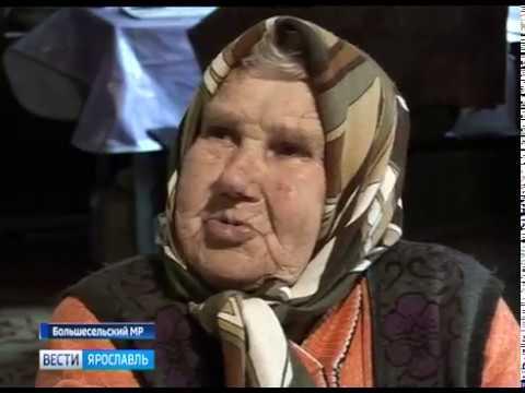 Пенсионерка обратилась с просьбой к властям спилить аварийное дерево на ее участке