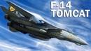 F 14 Tomcat Top Gun для моряков