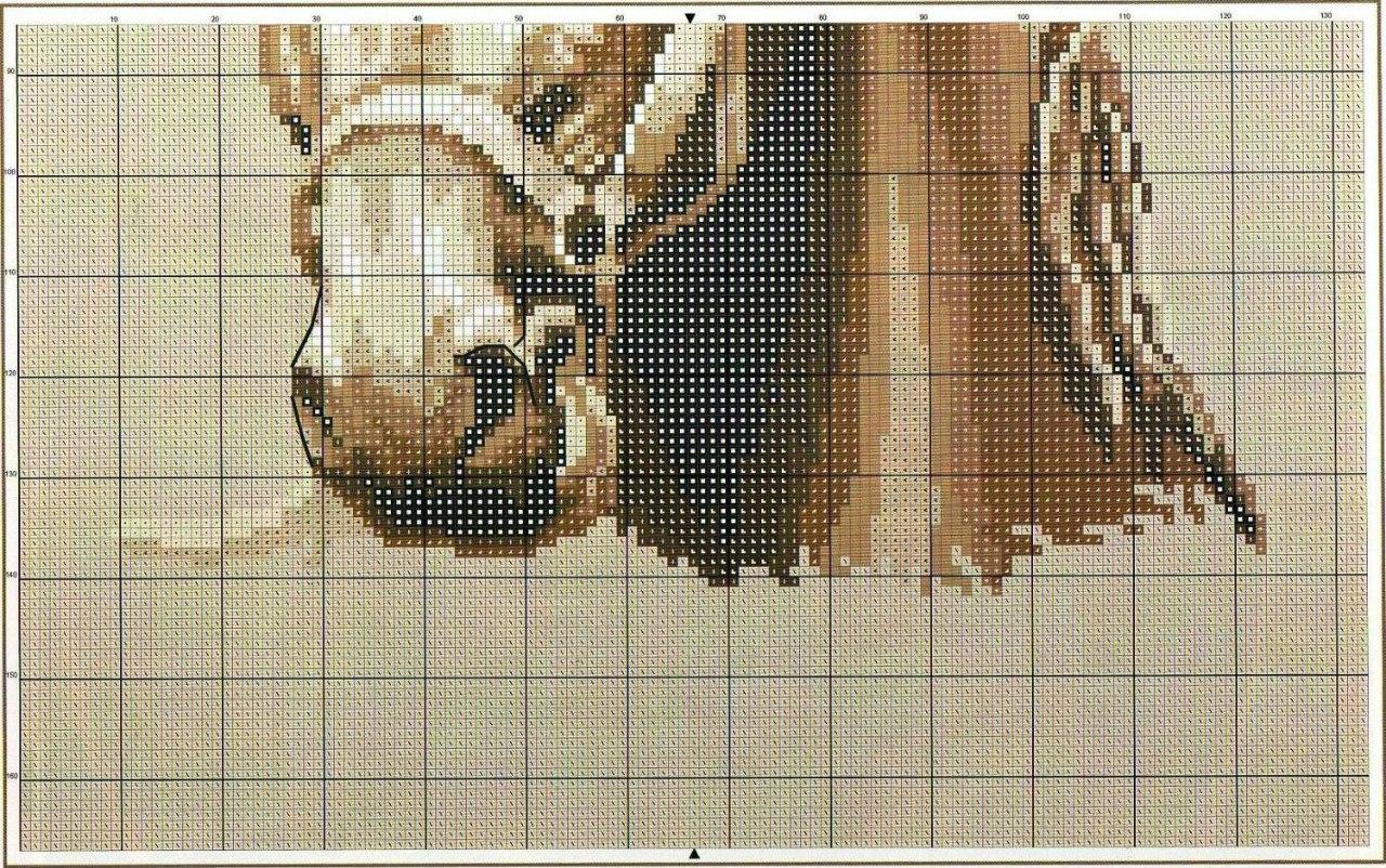 кони схема монохромной вышивки