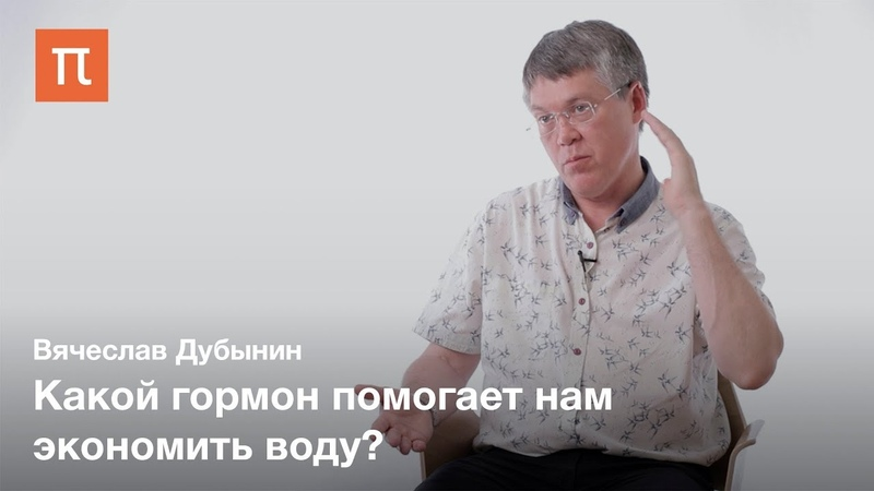 Мозг и жажда Вячеслав Дубынин