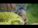 a summer table decoration _ Flower Factor tutorial _ Powered by Deliflor Chrysanten