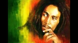 Bob Marley - Roots Rock Reggae