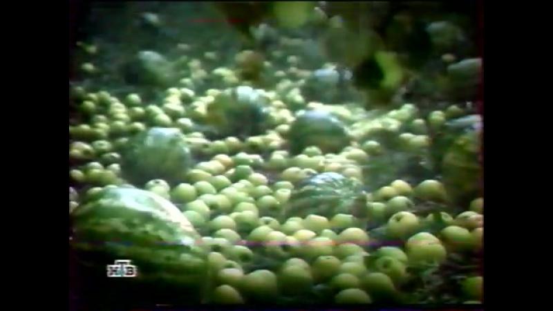 (staroetv.su) Окончание вещания (НТВ, 30.09.2003)