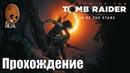 Shadow of the Tomb Raider - Прохождение 9➤ Путь мертвых. Путь в тайный город испытание паука.