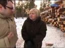 Специальный корреспондент  Тёмный лес РЕПОРТАЖ