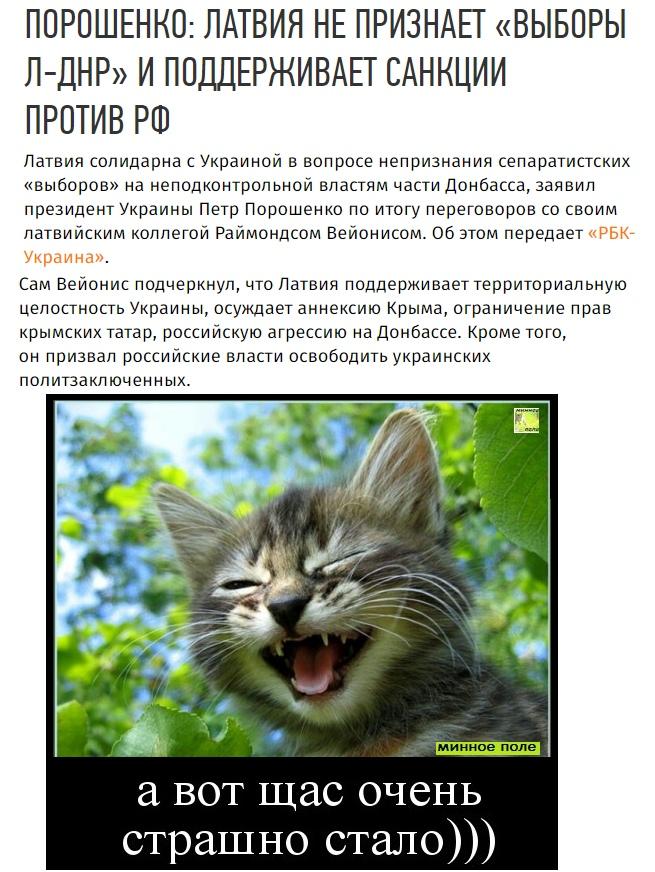 https://pp.userapi.com/c848636/v848636324/c9a41/tpM4jb3k95A.jpg