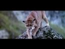 Kamil Esten, Juliet Lyons - Cant Stop [Official Music Video] (Trance-2015)