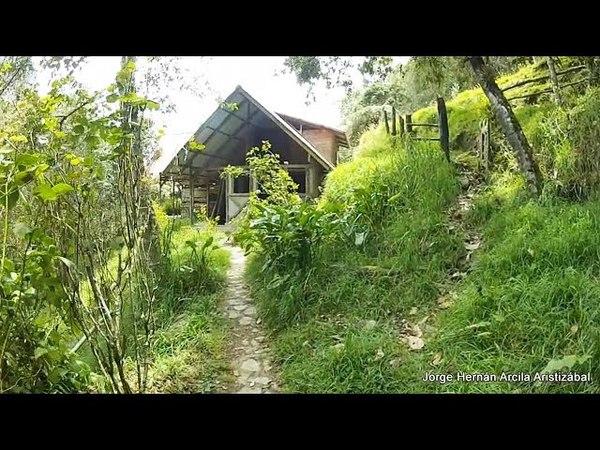 Recorrido Valle de Cocora Estrella de Agua Quindio Parte 22