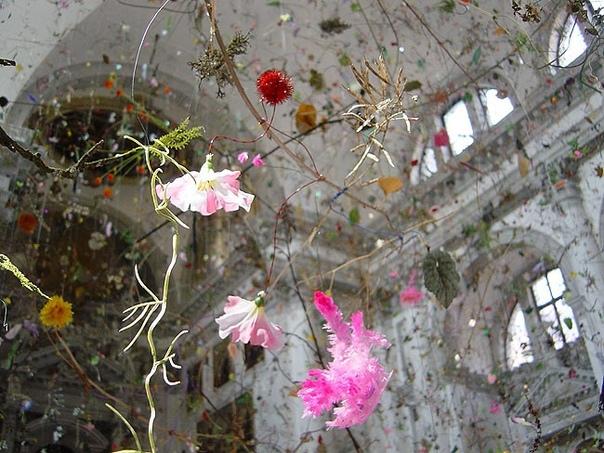 «Падающий сад» 50-й Венецианское биеннале в церкви Сан-Ста-Гранд-канал.