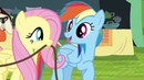 PMV The Bad Touch